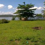 Casa de condomínio no Parque Burle 3